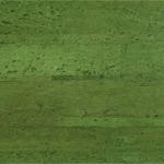 Джульяно spring green